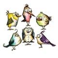 Sizzix Framelits Bird Crazy Die Set by Tim Holtz (18 Pack)