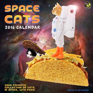 2016 Space Cats Wall Calendar