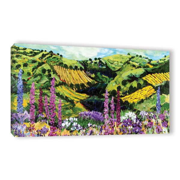 ArtWall Allan Friedlander 'Different Garden' Gallery-wrapped Canvas