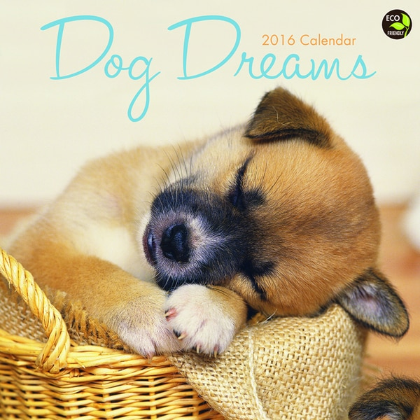 2016 Dog Dreams Wall Calendar