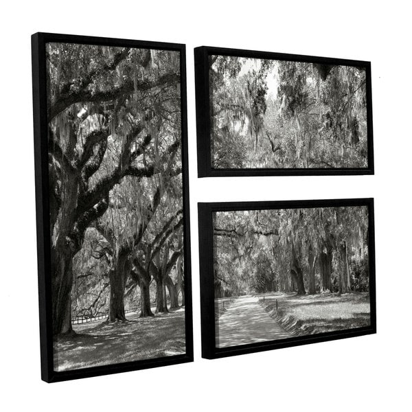 ArtWall Steve Ainsworth 'Live Oak Avenue' 3 Piece Floater Framed Canvas Flag Set