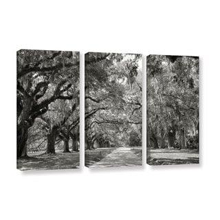ArtWall Steve Ainsworth 'Live Oak Avenue' 3 Piece Gallery-wrapped Canvas Set