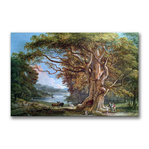 Paul Sandby 'An Ancient Beech Tree 1794' Canvas Art