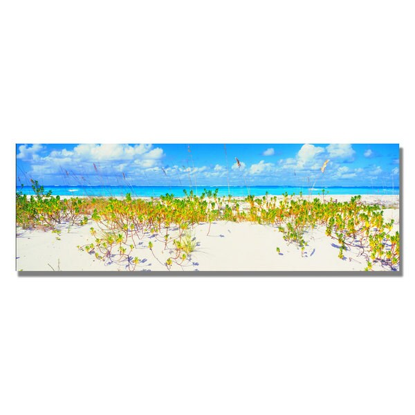 Preston 'Turks Beach' Canvas Art