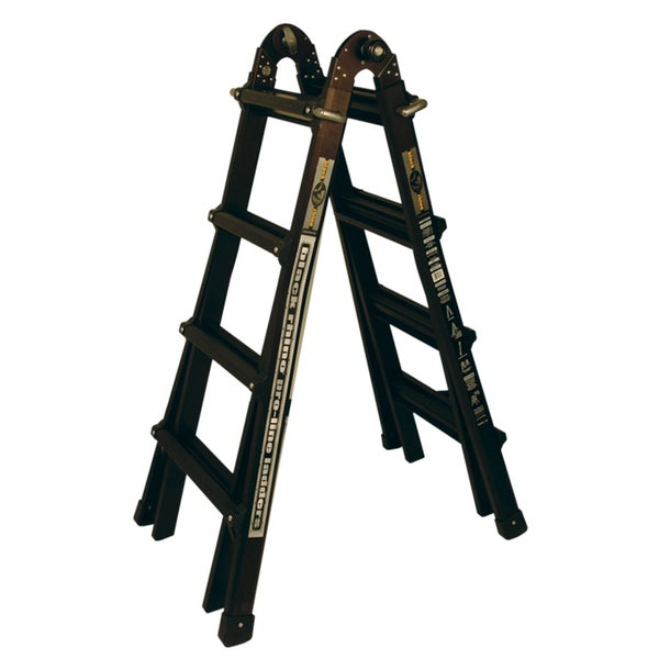 Black Rhino Back in Black Proline Ladder System