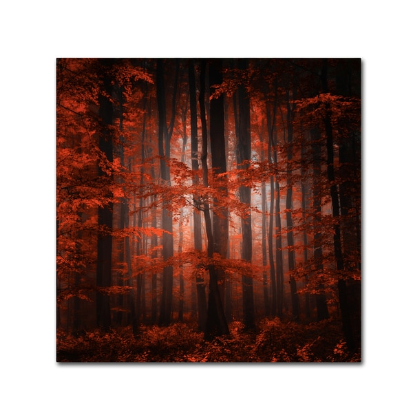 Philippe Sainte-Laudy 'Red Parallel Universe' Canvas Art