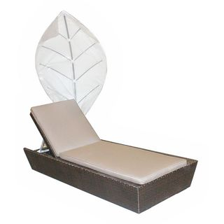 Decorative Modern Indoor/Outdoor Chaise Lounge