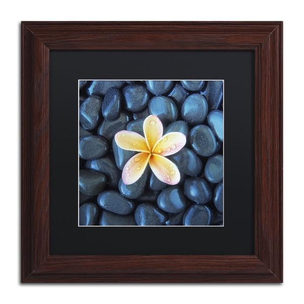 David Evans 'Plumeria & Pebbles 2' Black Matte, Wood Framed Wall Art