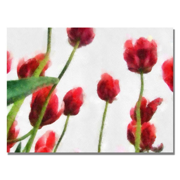 Michelle Calkins 'Red Tulips from Bottom Up II' Canvas Art