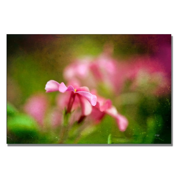 Lois Bryan 'Pink Phlox' Canvas Art
