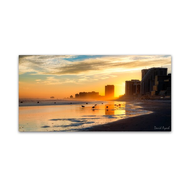 David Ayash 'Atlantic City Sunset' Canvas Art