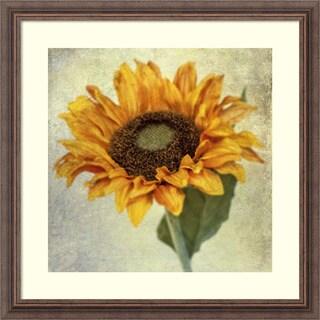 Honey Malek 'Lush Vintage Florals I' Framed Art Print 23 x 23-inch