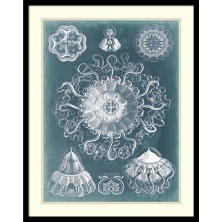 Vision Studio 'Sealife Blueprint II' Framed Art Print 23 x 29-inch
