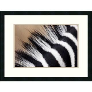 Vincent Grafhorst 'Zebra Mane, Khama Rhino Sanctuary, Serowe, Botswana' Framed Art Print 26 x 20-inch