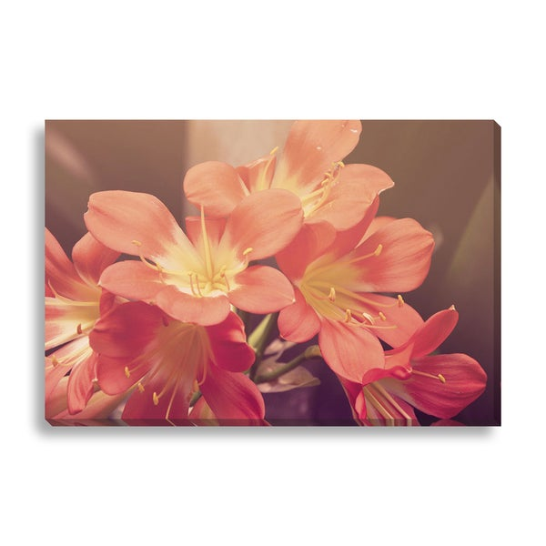 New Era Photography 'Pink Blossoms' Canvas Gallery Wrap
