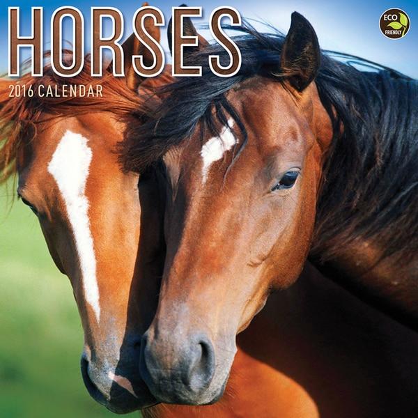 2016 Horses Wall Calendar
