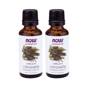 Now Foods Citronella 1-ounce Essential Oil (Pack of 2)