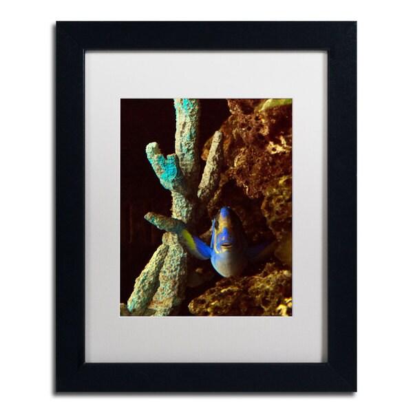 Kurt Shaffer 'Fish in the Rocks' White Matte, Black Framed Wall Art