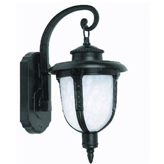 Yosemite Home Decor Frosted Glass Black 1-light Outdoor Wall Fixture