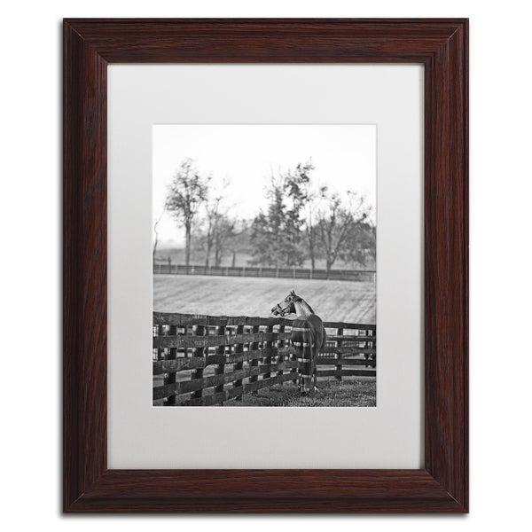 Preston 'Kentucky Horse Sunrise BW' White Matte, Black Framed Wall Art
