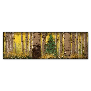 Roderick Stevens 'PanorAspen Lone Pine' Canvas Wall Art