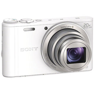 Sony Cyber-shot DSC-WX350 Digital Camera (White)