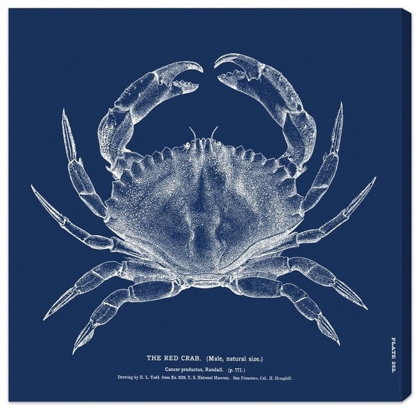 Blakely Home 'The Red Crab - Blue' Canvas Art
