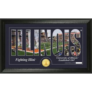 "University of Illinois ""Silhouette"" Bronze Coin Panoramic Photo Mint"