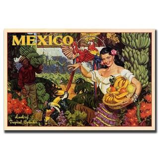 Vintage Art 'Mexico' Canvas Wall Art