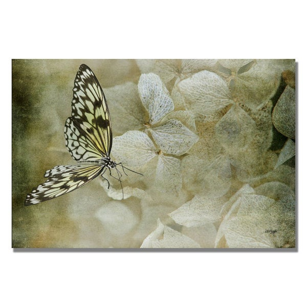 Lois Bryan 'A Lighter Touch' Canvas Wall Art