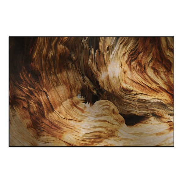 New Era Photography 'Wood Grain' Mounted Metal
