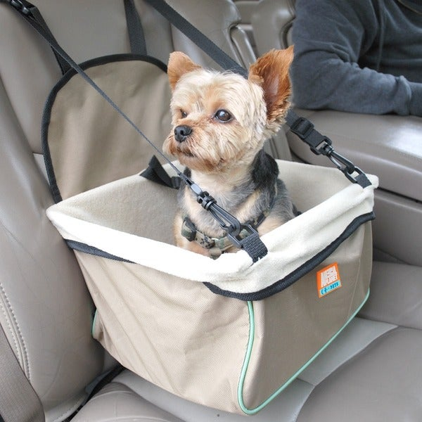 Animal Planet Booster Car Seat