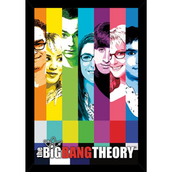 The Big Bang Theory - Signal Framed Poster