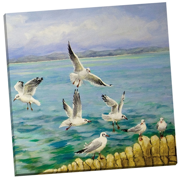 'Seagull Flight square' Sandra Francis 24-inch x 24-inch Wrapped Canvas Wall Art