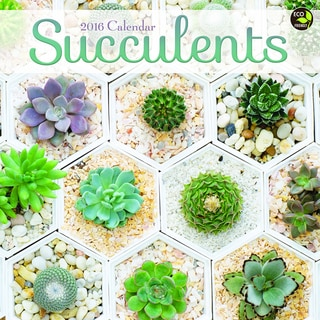 2016 Succulents Wall Calendar