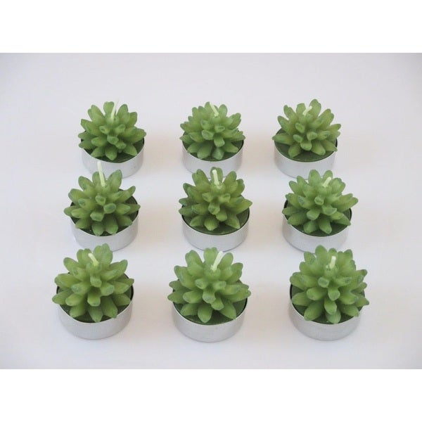 Succulent Tealight Candles (Set of 9)