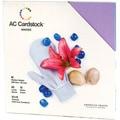 American Crafts Seasonal Cardstock Pack 12inX12in 60/PkgWinter