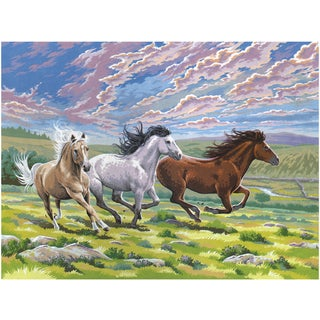 Paint By Number Kit 12inX16inGalloping Horses