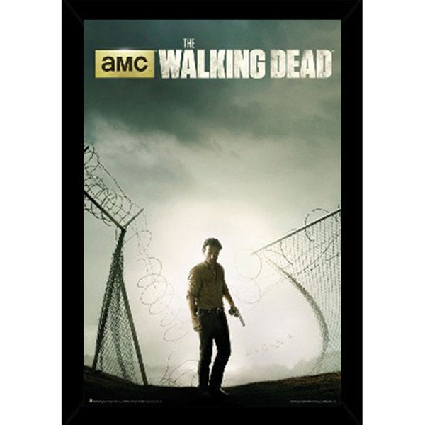 The Walking Dead Season 4 Poster (24-inches x 36-inches) with Contemporary Poster Frame