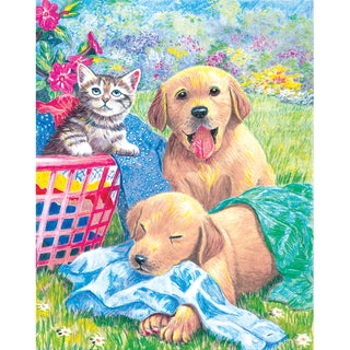 Color Pencil By Number Kit 8.75inX11.75inWash Day Fun