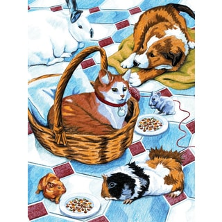 Color Pencil By Number Kit 8.75inX11.75inFamily Pets