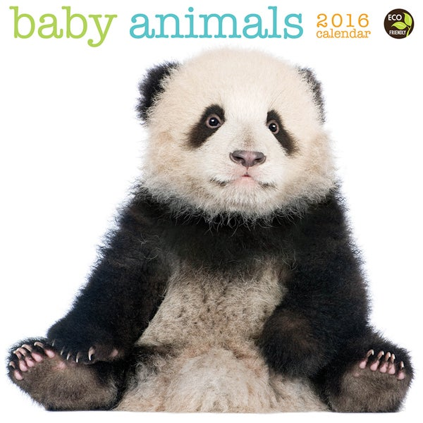 2016 Baby Animals Wall Calendar
