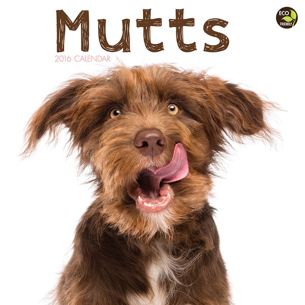 2016 Mutts Wall Calendar