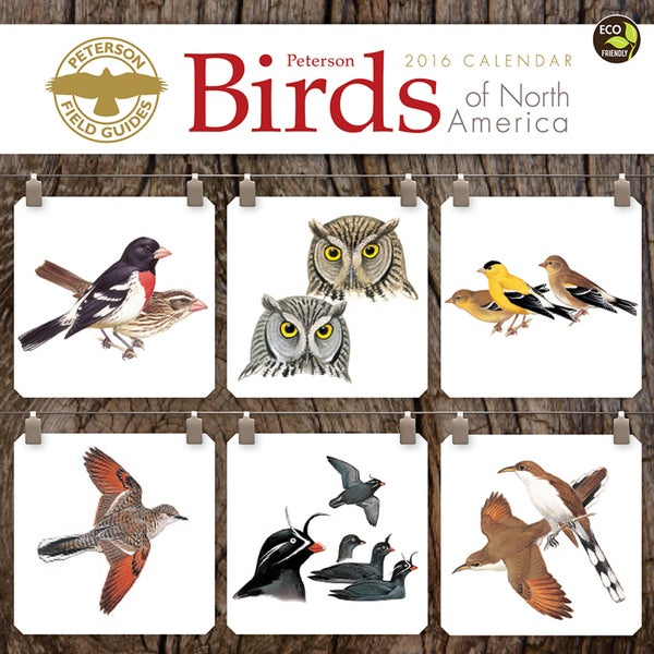 2016 Peterson Field Guide Birds Wall Calendar
