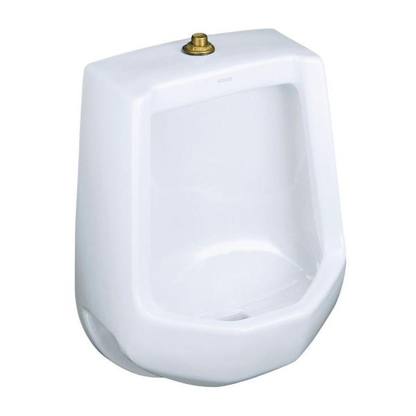 Kohler Freshman Urinal in White