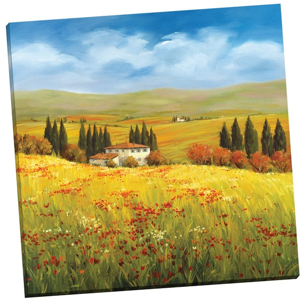 Portfolio Canvas Decor 'Lo Splendor De La Toscana' by Tim Howe Gallery Wrapped Canvas