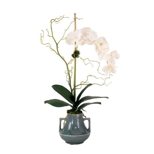 White Vanda Orchid Planter
