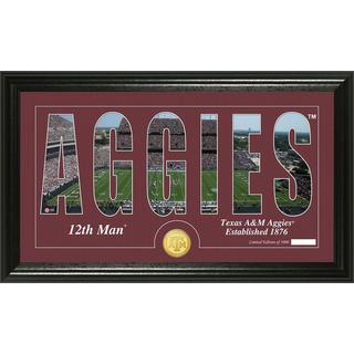 Texas A and M University 'Word Art' Bronze Coin Panoramic Photo Mint