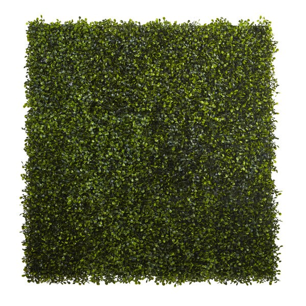 12-inch x 10-inch Boxwood Mat (Set of 12)