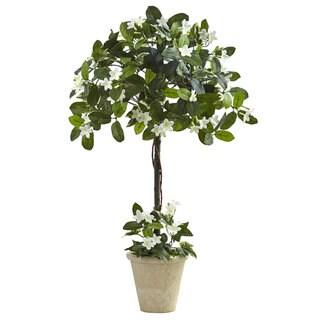 3-foot Stephanotis Topiary w/Planter